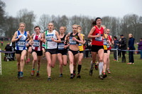 Snr Women _ Inter Counties 2017 _   212574