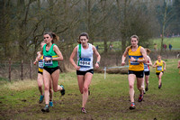 Snr Women _ Inter Counties 2017 _   212552