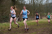 Snr Women _ Inter Counties 2017 _   212542