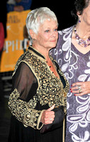 Dame Judi Dench _ Philomena Lee  _ 17922